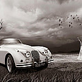 Jaguar Xk150 - Admiring The View by Linton Hart