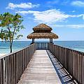 Jamaican Paradise by David Hart