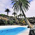 Jameos Del Agua On Lanzarote by Karol Kozlowski