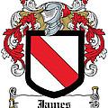 James Coat Of Arms Irish by Heraldry