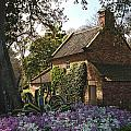 James Cook's Cottage by View Factor Images