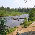 James Creek Pond by Donlyn Arbuthnot
