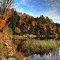 Jamies Pond 2 by Andrea Platt