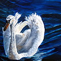 Jamie's Swan by LaVonne Hand