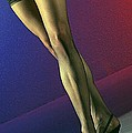 Jane Legs 1-1 by Gary Gingrich Galleries