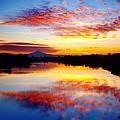 Jantzen Beach Sunrise by Darren  White