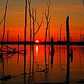 January Sunrise by Raymond Salani III