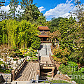 Japan In Pasadena - Beautiful View Of The Newly Renovated Japanese Garden In The Huntington Library. by Jamie Pham