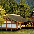 Japan Itsukushima by Sebastian Musial
