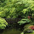 Japanes Garden Reverie Portland Oregon by Mike Nellums