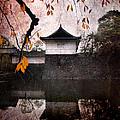 Japanese Autumn by Eena Bo