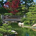 Japanese Bridge by Bill Jonas