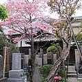 Japanese Buddhist Temple In The Garden by Seija Talolahti