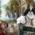 Japanese Chin Art Canvas Print by Sandra Sij