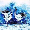 Japanese Cranes by Zaira Dzhaubaeva