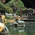Japanese Garden At Sundown by Maria Urso