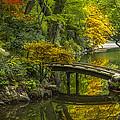 Japanese Garden by Sebastian Musial