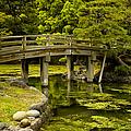 Japanese Garden Tokyo by Sebastian Musial