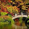 Japanese Gardens 9540 by Ricardo J Ruiz de Porras