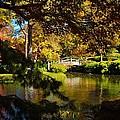Japanese Gardens 9561 by Ricardo J Ruiz de Porras