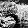Japanese Gardens And Bridge by Paul W Faust -  Impressions of Light