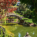 Japanese Spring - The Japanese Garden Of The Huntington Library. by Jamie Pham