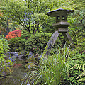 Japanese Stone Lantern By Water Stream by David Gn