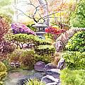 San Francisco Golden Gate Park Japanese Tea Garden  by Irina Sztukowski