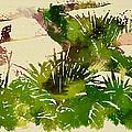 Japanese Washi Garden Reflections by Mario Carini