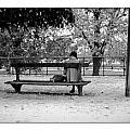 Jardin De Tuileries by Cyril Jayant