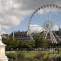 Jardin Des Tuileries by Lana Enderle