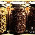 Jars On Sill by Grace Grogan