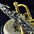 Jazz by Elf Evans