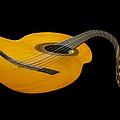Jazz Guitar 2 by Debra and Dave Vanderlaan