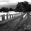 Jefferson Barracks National Cemetery by M Landis