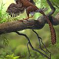 Jeholornis Prima Perched On A Tree by Sergey Krasovskiy