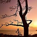 Jeju Sunset by Yen