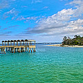 Jekyll Island Just Like Paradise by Betsy Knapp