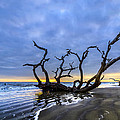 Jekyll Island Seascape by Debra and Dave Vanderlaan