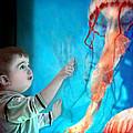 Jellyfish Boy by Jennie Breeze