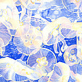 Jellyfish Jubilee by Pauline Walsh Jacobson
