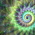 Jellyfish Spiral With Vertical Streak  by Ann Stretton