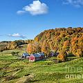 Jenne Farm by Claudia Kuhn