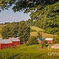 Jenne Farm In Summer by Susan Cole Kelly
