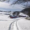 Jenne Farm by Tom Singleton