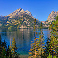 Jenny Lake Overlook by Greg Norrell