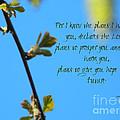 Jeremiah 29 by Andrea Anderegg