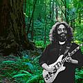 J G In Muir Woods by Ben Upham