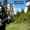 Jerry Plays Birdsongs by Ben Upham