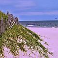 Jersey Shore 11 by Allen Beatty